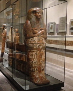 1 XY Mummia