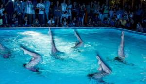 Lo spettacolo di aqua show