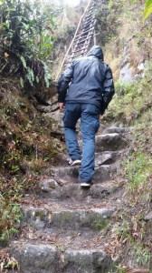 Il sentiero verso Machu Picchu