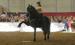 Esibizione di Daniela col suo cavallo