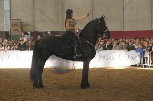 Daniela col suo cavallo