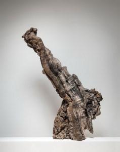 Anna Gillespie, Old Giant.  Unique bronze, found wood.  114 x 72 x 28cm.  2014