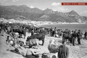 Una foro storica ddella Fiera degli animali sulle spiegge di Naxos (Archivio Malambrì)