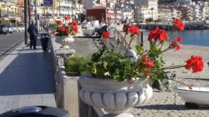 I vasi collocati sul lungomare di Naxos