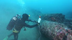 Nei fondali della Baia di Naxos